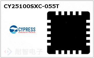 CY25100SXC-055T