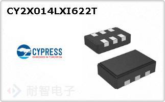 CY2X014LXI622T