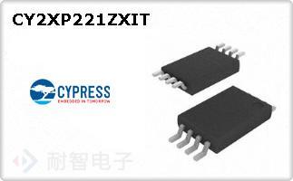 CY2XP221ZXIT