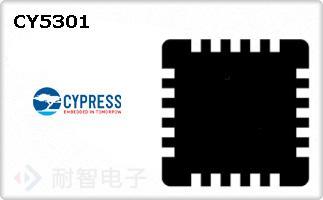 CY5301