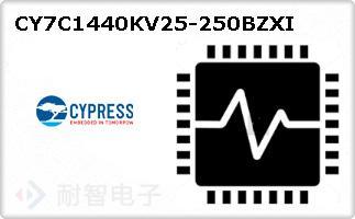 CY7C1440KV25-250BZXI