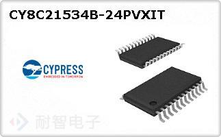 CY8C21534B-24PVXIT