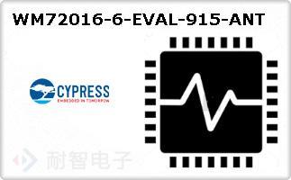 WM72016-6-EVAL-915-ANT