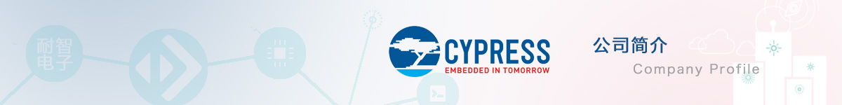 Cypress公司介绍